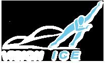 visionice_logo